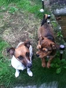 Cooper&Stanley